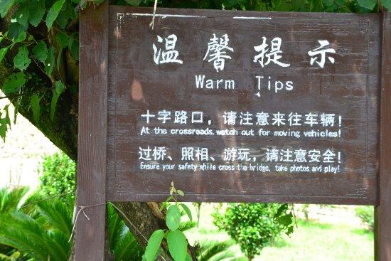 Eryi Tower: Signage