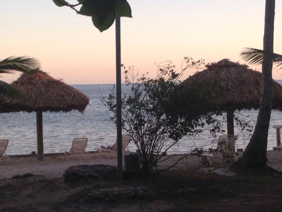 Castaway Island Day Trip: photo5.jpg