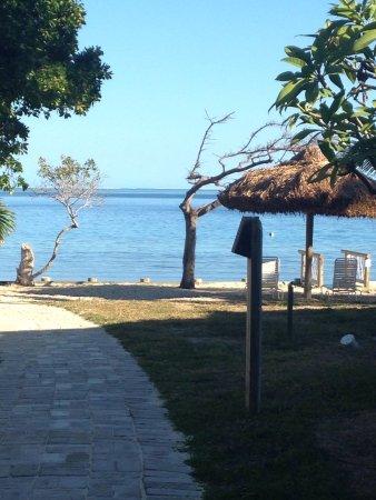 Castaway Island Day Trip: photo6.jpg