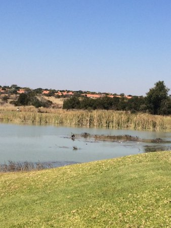 Koro Creek Bushveld Golf Estate