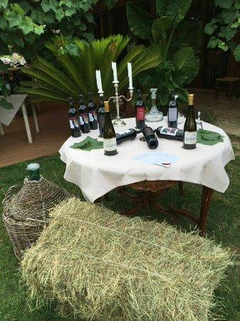 Agriturismo La Graziosa: Serata di degustazione vini