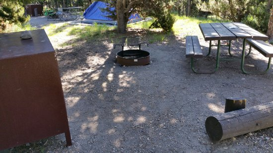 Indian Creek Campground: 20160623_085655_large.jpg
