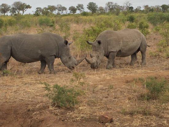 Umkumbe Safari Lodge: photo0.jpg