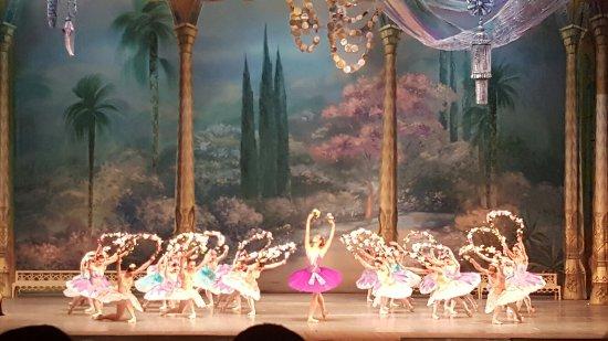 Kharkiv State Academic Opera and Ballet Theatre: 20160310_204452_large.jpg