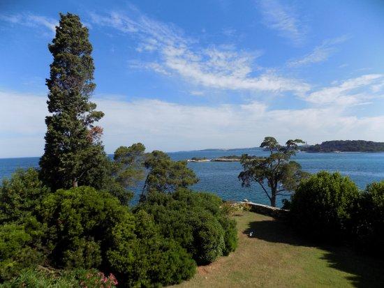 Island Hotel Istra: vista dalla terrazza della stanza 274-5