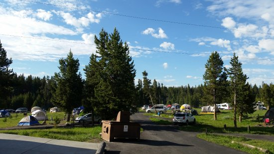 Bridge Bay Campground: Looking toward the field of D Loop from in front of the bathroom