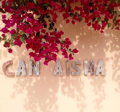 Can Aisha