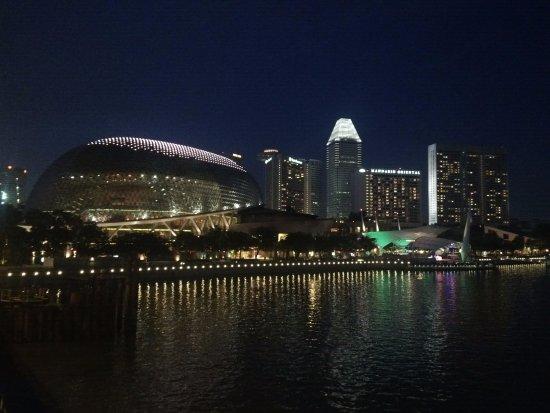 Esplanade Park: Night View