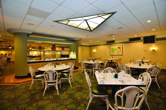 Airport Honolulu Hotel Dining Willoghbys1