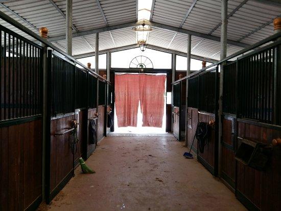 Centro Equestre Fonigo