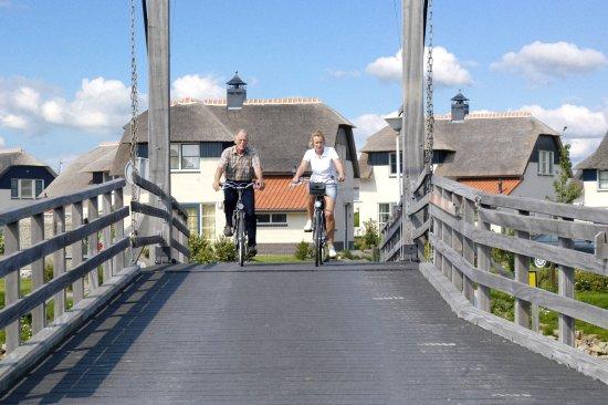 Makkum, Nederland: Duinvilla