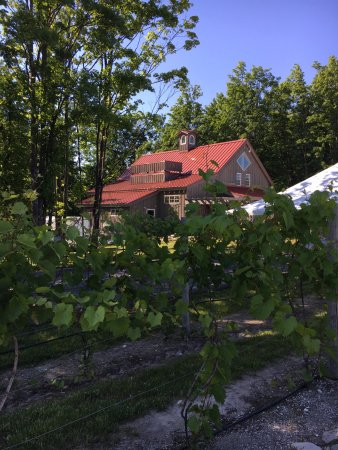 Lake Leelanau, มิชิแกน: a view of the winery building approaching from the vineyard