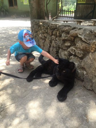 Zoo Castellar: photo0.jpg