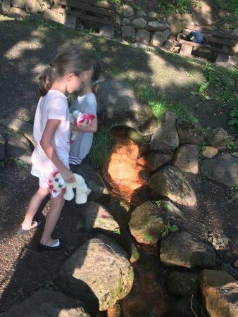 Zrodełko Miłosci - Ścieżka edukacyjno-widokowa