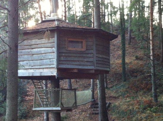 Cabanes als Arbres : nuestra cabaña a 7 metros de altura en un abeto