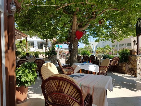 Kayı's Bar & Restaurant: A very good place, the food is excellent!
