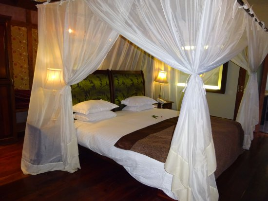 Arusha Coffee Lodge: Very large comfortable beds well protected from mosquitos.