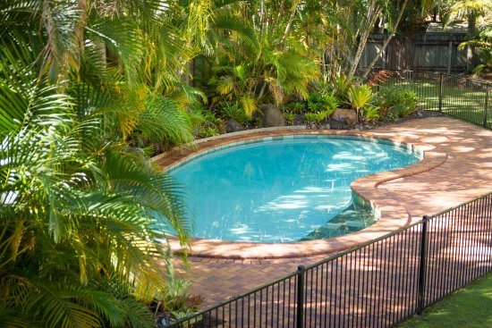 Sunshine Coast Motor Lodge: Tropical Pool