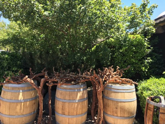 Wine Wrangler - Day Tours: photo7.jpg