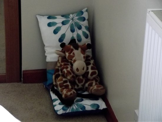 Piddlehinton, UK: Giraffe had special bed.....