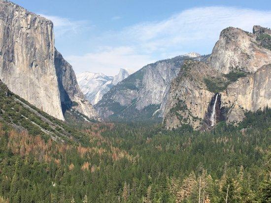 Yosemite Valley Floor Tour: Yosemite Valley Floor Bus Tour