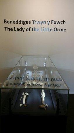 Llandudno Museum : 20160630_152626_large.jpg
