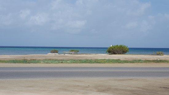 Aruba Sunset Beach Studios: View from front of studios.