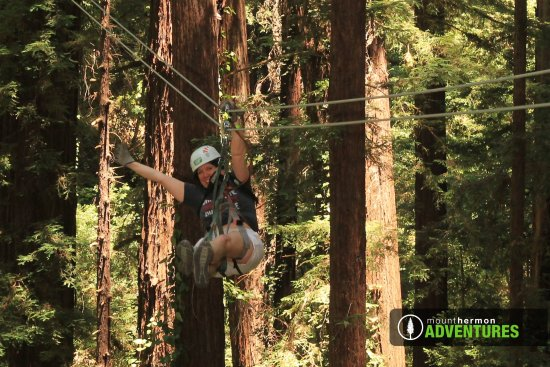Mount Hermon, Kalifornien: Zipping through the redwoods in Santa Cruz