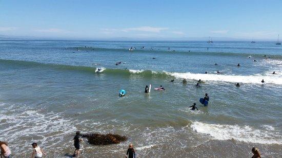 Capitola City Beach: 20160626_150611_large.jpg