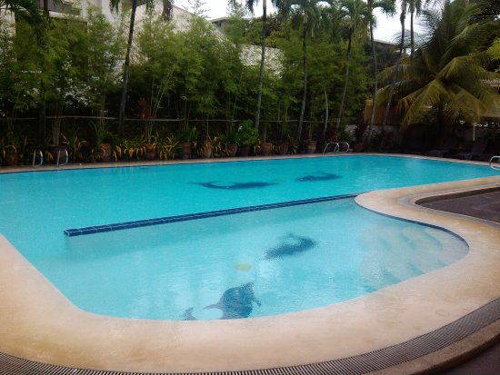 Kiddie and main pool picture of domicilio lorenzo - Apartelle in davao city with swimming pool ...