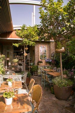 Jardin secreto salvador bachiller madrid centro for Salvador bachiller jardin secreto