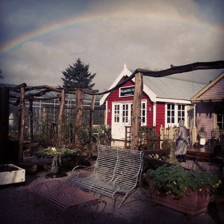 Ribchester, UK: Rainbow
