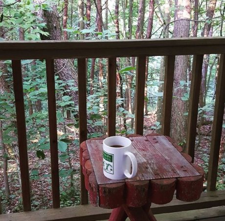 The Inn & Spa at Cedar Falls: The view from the back deck of our cabin, a wonderful location.