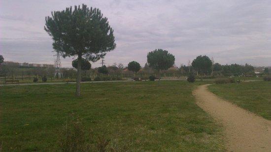 Parque de El Baldio