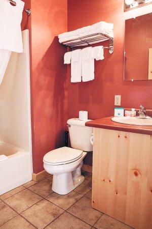 Dubois, WY: Bathroom Deluxe