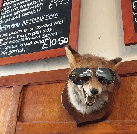 Findhorn, UK: photo2.jpg