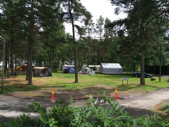 Faervik, النرويج: photo6.jpg
