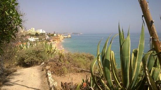 Hotel Avenida Praia Photo