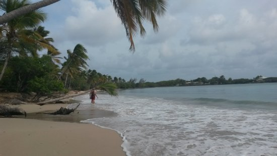 Riviere-Salee, Martinica: Les salines, très belle plage :)