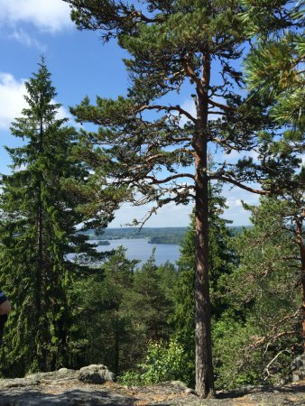 Stone Castle of Pirunvuori: Amazing view