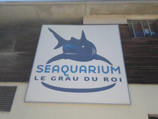 picture of seaquarium le grau du roi tripadvisor. Black Bedroom Furniture Sets. Home Design Ideas
