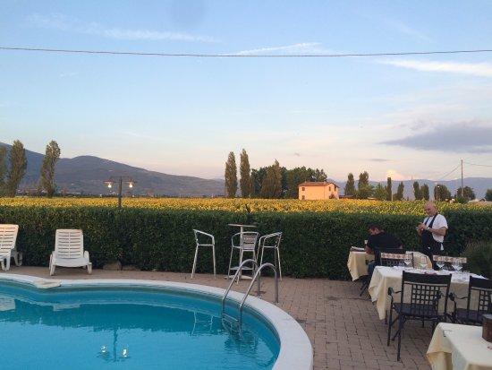 Cannara, Italia: photo2.jpg