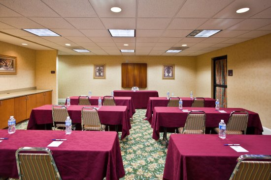 هوليداي إن إكسبريس هوتل آند سويتس تامبا: Meeting Room