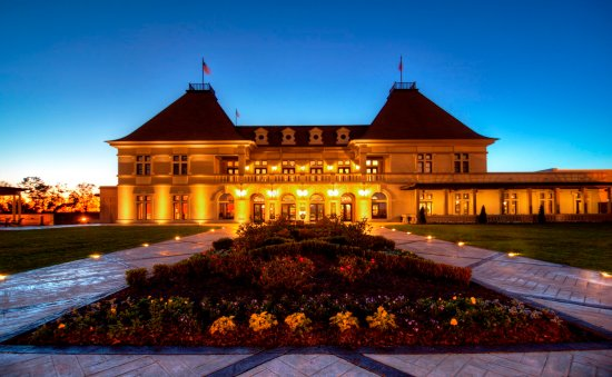 Chateau Elan Winery And Resort: Chateau Elan Exterior