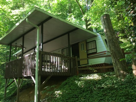 Moonshine Creek Campground: The Tree House