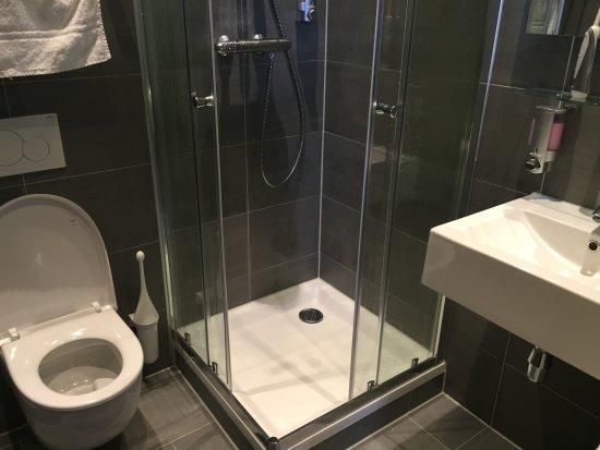 compacte badkamer netjes afgewerkt - Foto van B&B de Prince ...