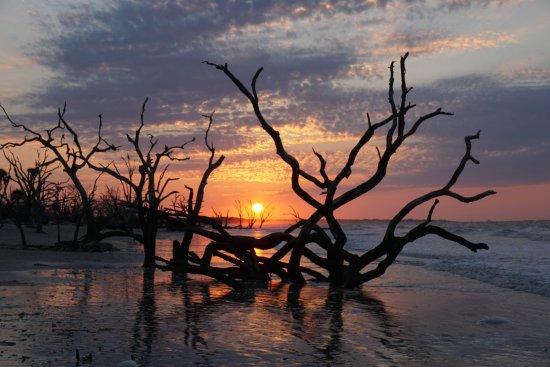 Charleston Photography Tours Sunrise On Boneyard Beach