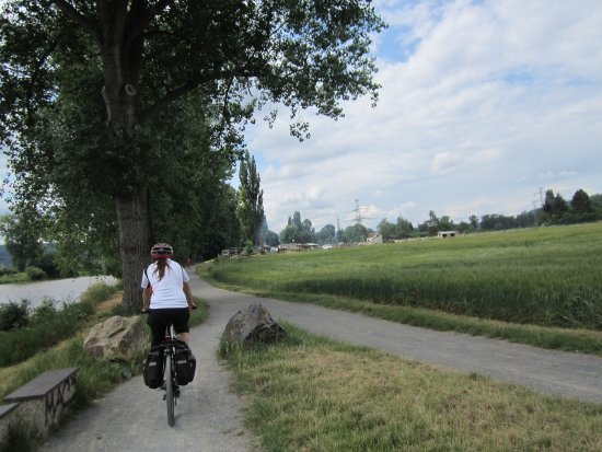 Ave Bicycle Tours - Day Tours: photo0.jpg
