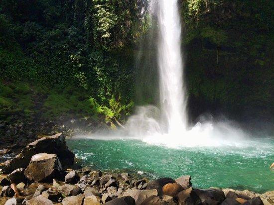 Gecko Trail - Day Tours : Waterfall hike in La Fortuna!