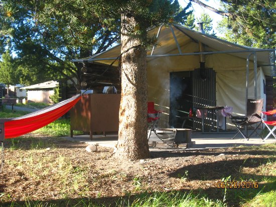 Colter Bay Village: Put up your hammock and enjoy the view. Firepit, bear box, and picnic tables outside.